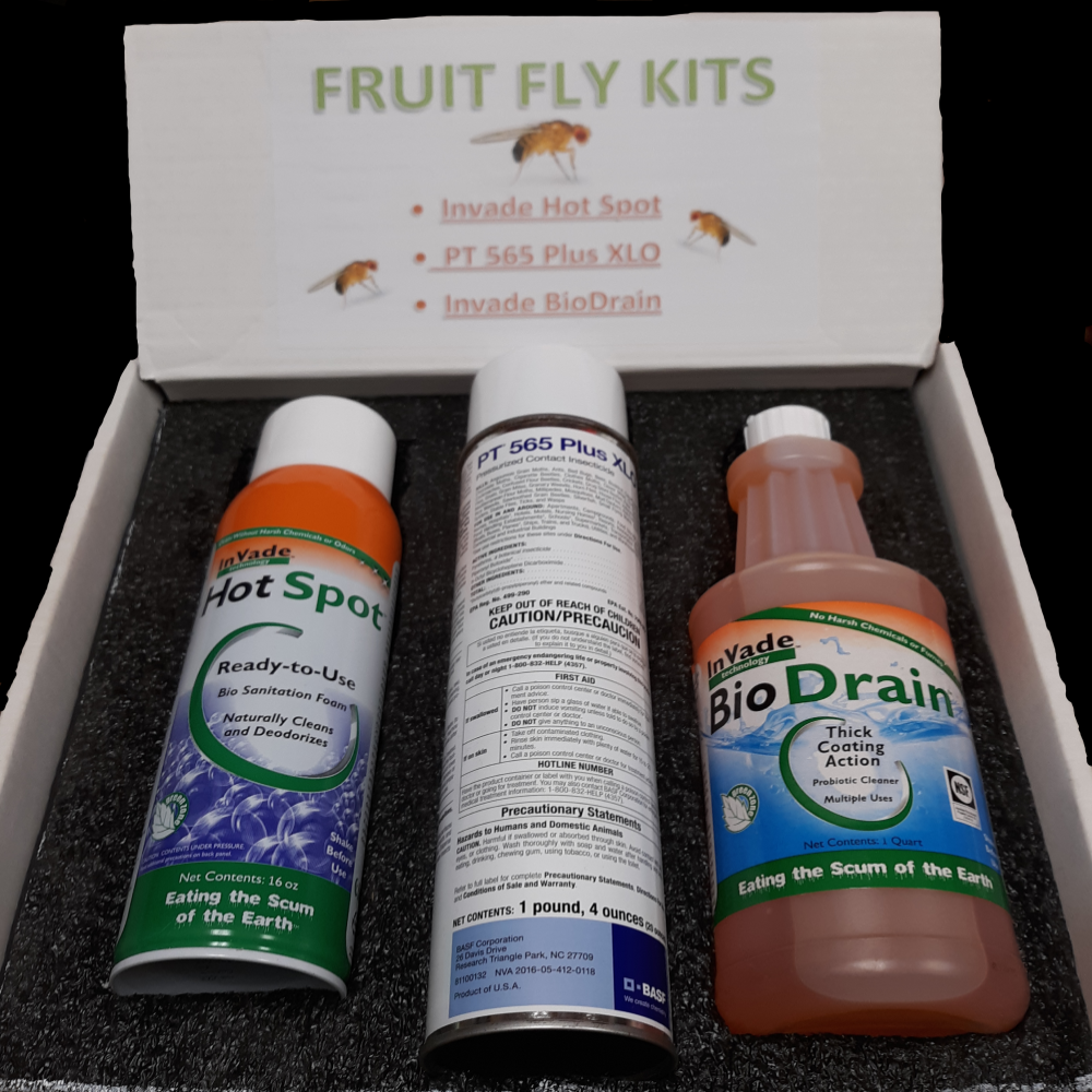Complete Fruit Fly Kit